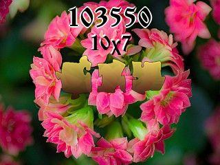 Puzzle №103550