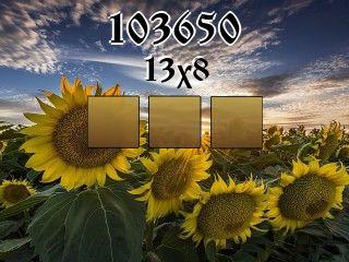 Puzzle №103650