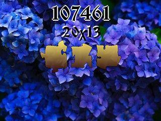 Puzzle №107461