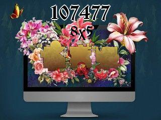 Puzzle №107477
