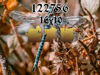 Puzzle №122756