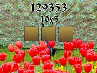 Puzzle №129353