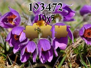 Puzzle №193472