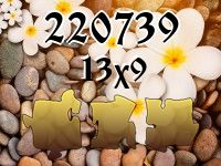Puzzle №220739