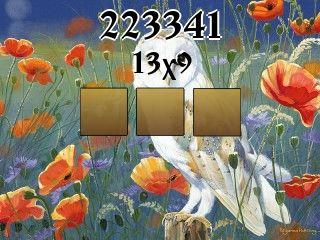 Puzzle №223341