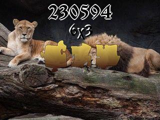 Puzzle №230594