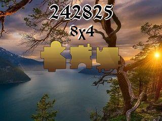 Puzzle №242825