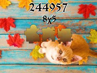 Puzzle №244957