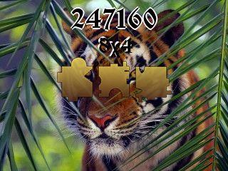 Puzzle №247160