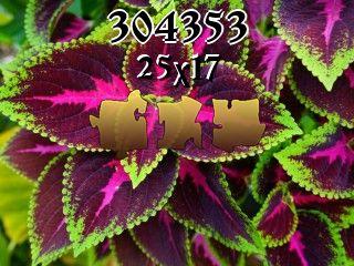 Puzzle №304353