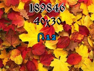 Puzzle zmienny №189846