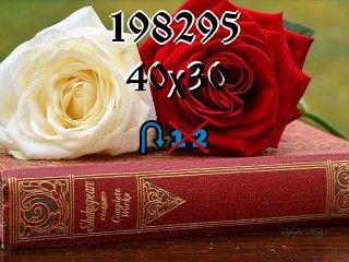 Puzzle zmienny №198295