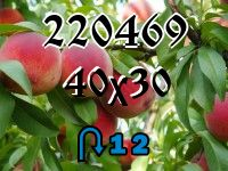 Puzzle zmienny №220469