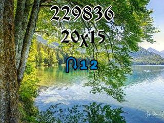 Puzzle zmienny №229836