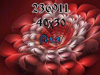 Puzzle zmienny №236911