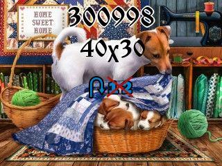 Puzzle zmienny №300998