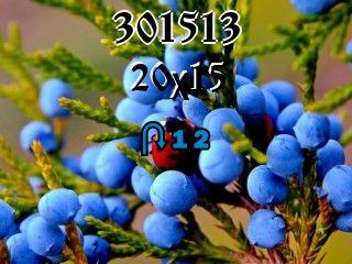 Puzzle zmienny №301513