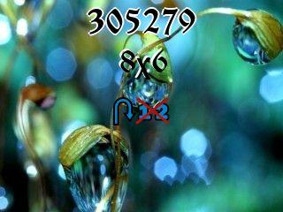 Puzzle zmienny №305279
