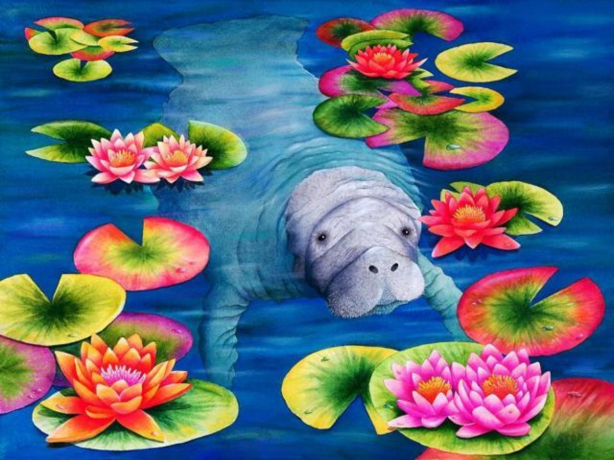 Puzzle Zbierać puzzle online - Manatee and lotuses