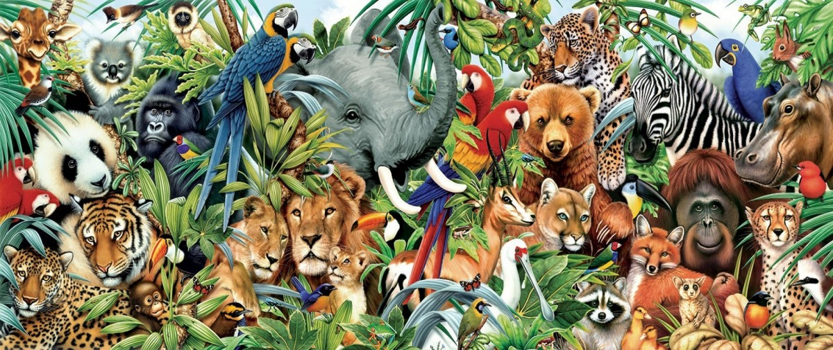 Puzzle Zbierać puzzle online - The world of animals