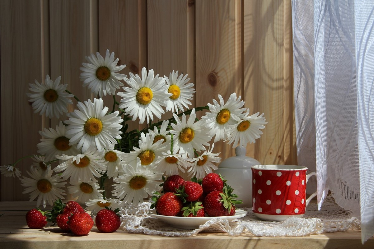Puzzle Zbierać puzzle online - Still life with daisies