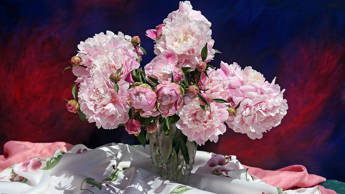 Puzzle Zbierać puzzle online - Peonies
