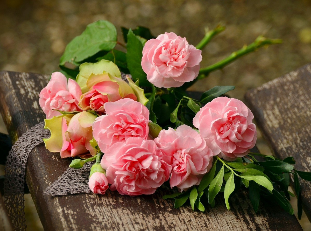 Puzzle Zbierać puzzle online - Peonies and roses