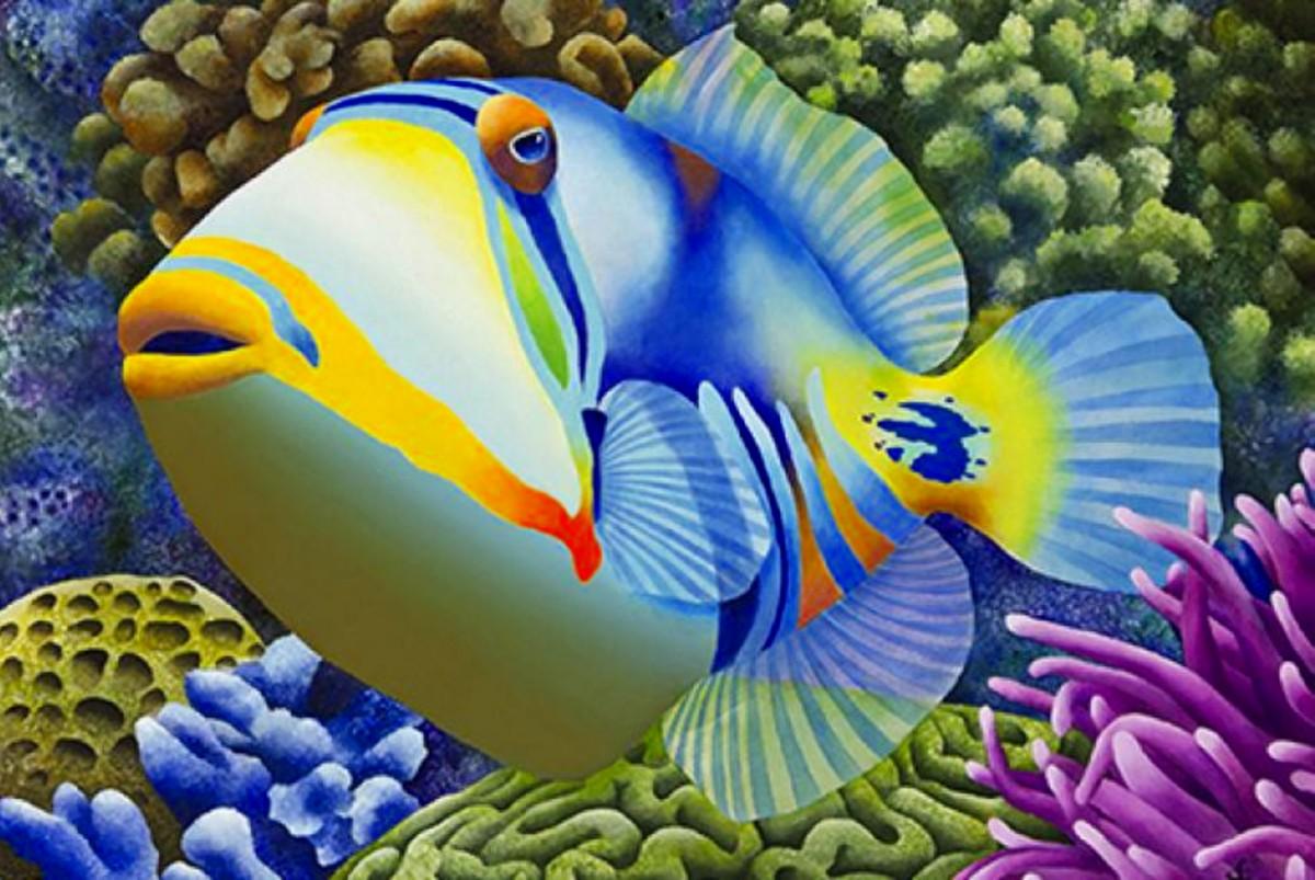Puzzle Zbierać puzzle online - A fish