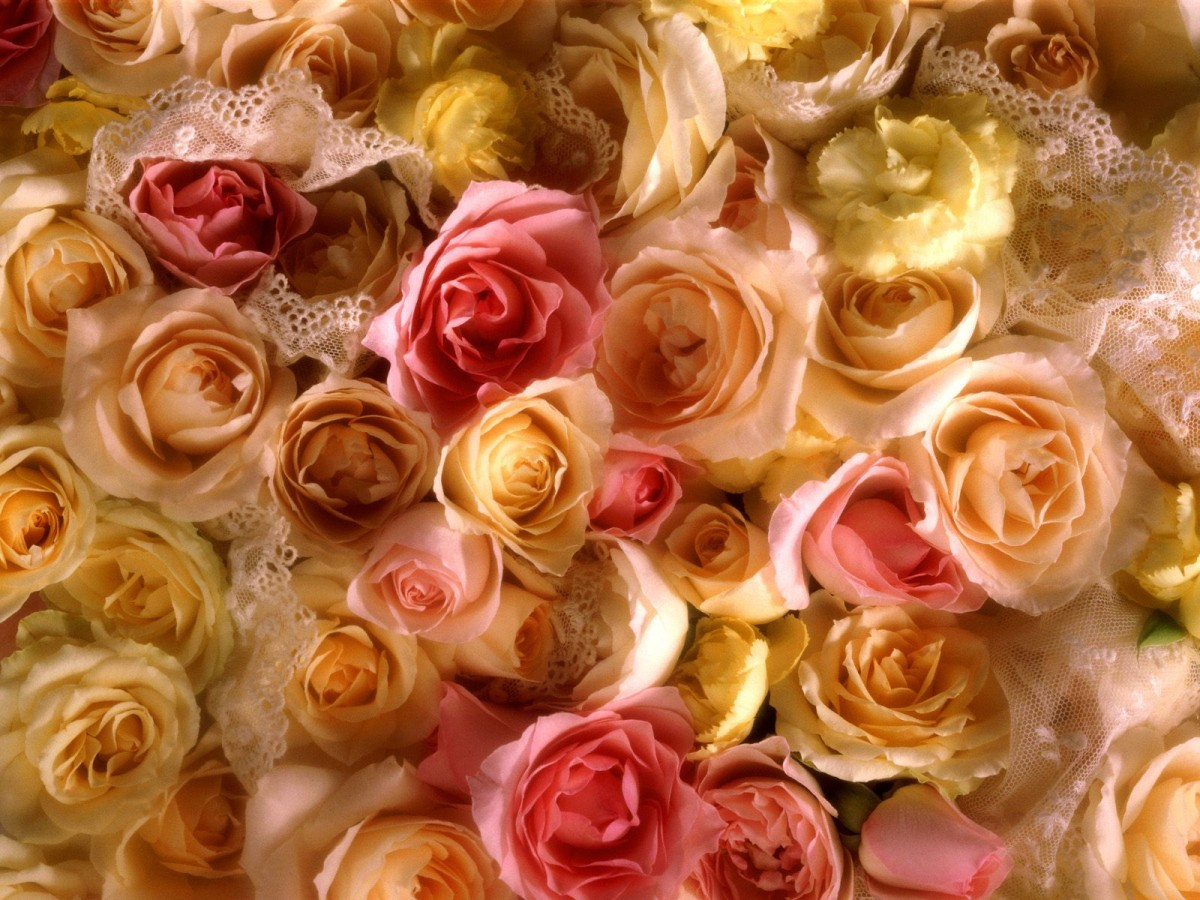 Puzzle Zbierać puzzle online - Roses and lace