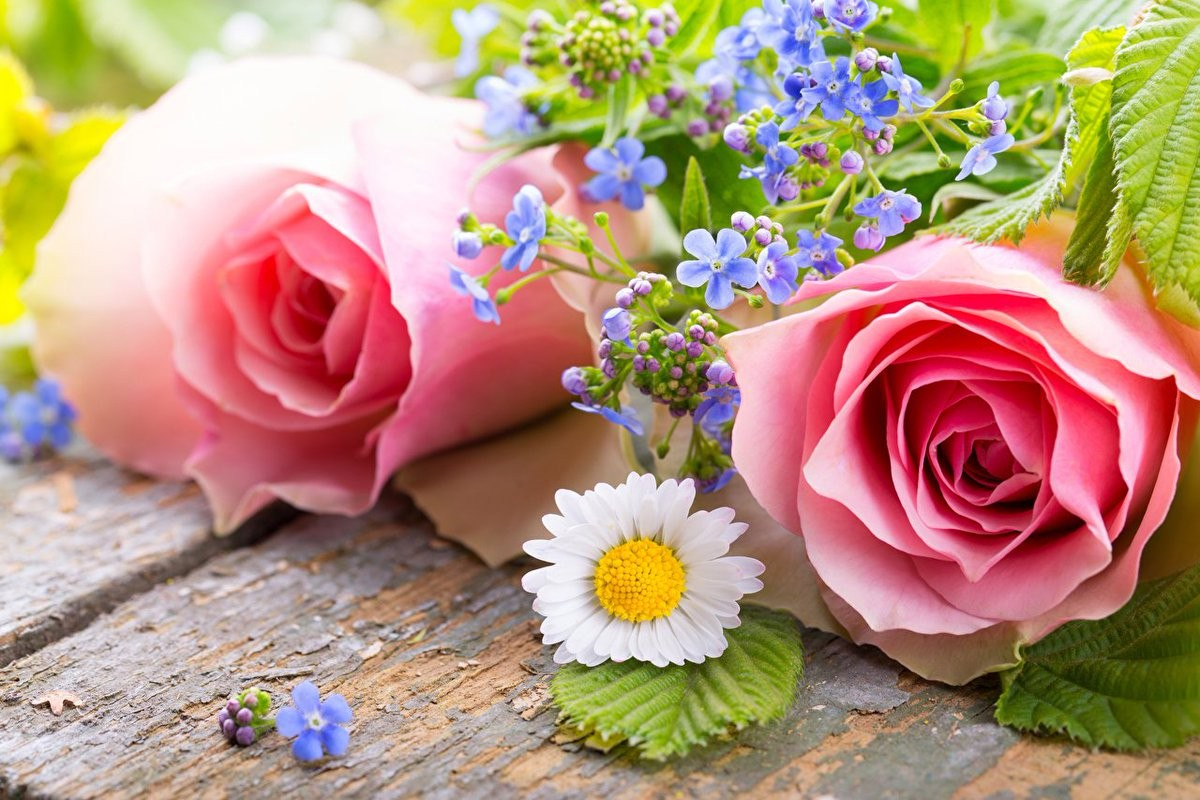 Puzzle Zbierać puzzle online - Roses and forget-me-nots