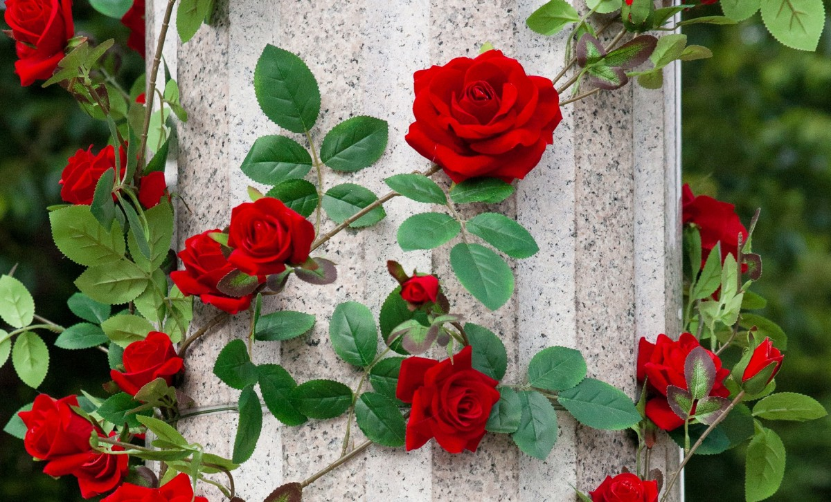 Puzzle Zbierać puzzle online - Roses on the column