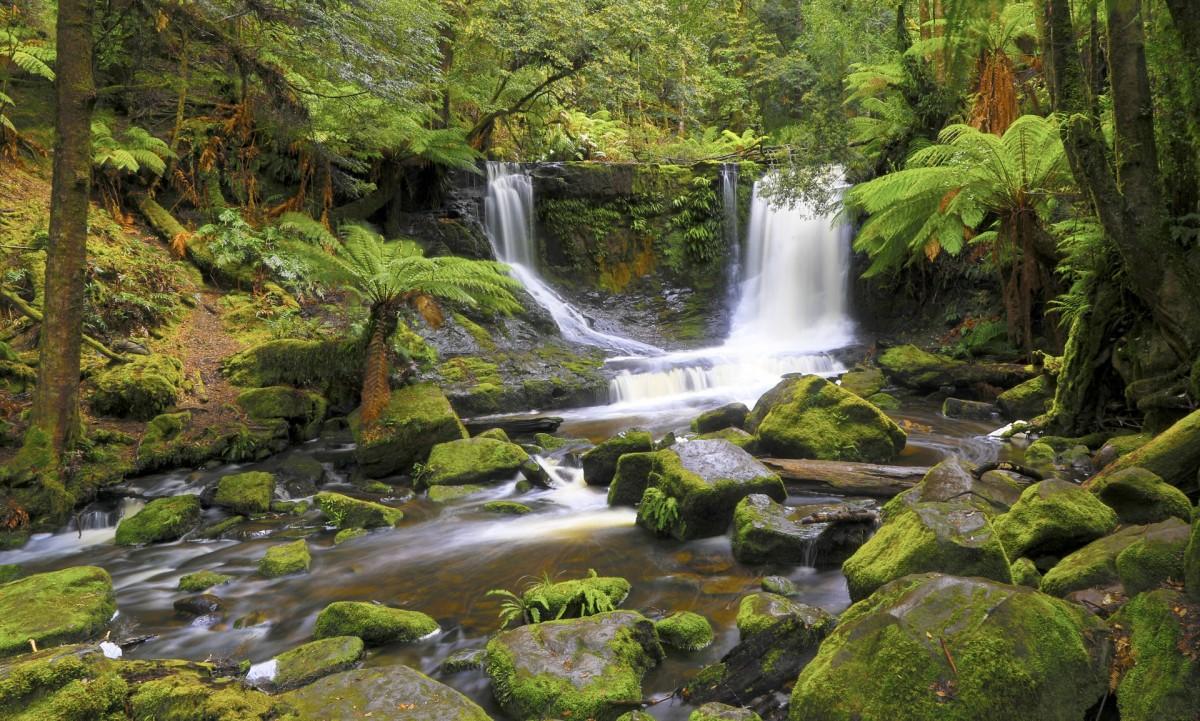 Puzzle Zbierać puzzle online - Tasmanian waterfall