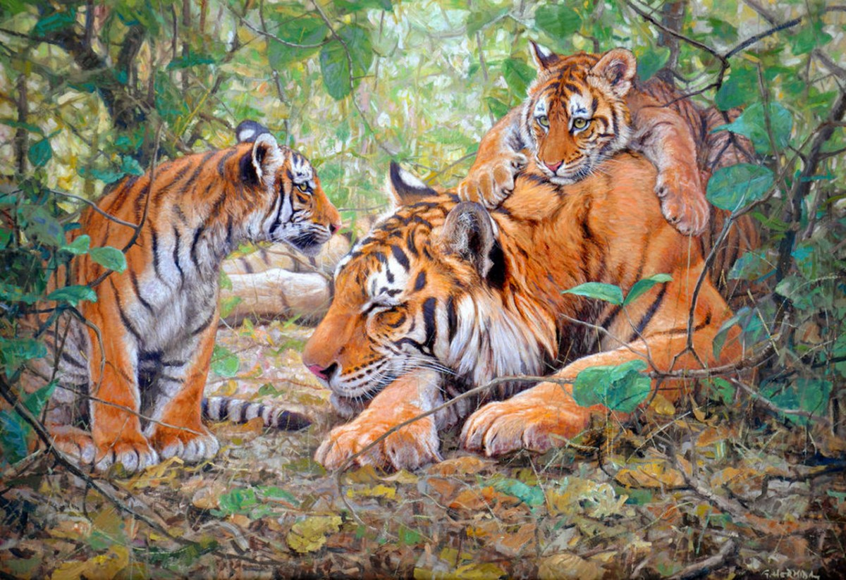 Puzzle Zbierać puzzle online - Tigress with cubs