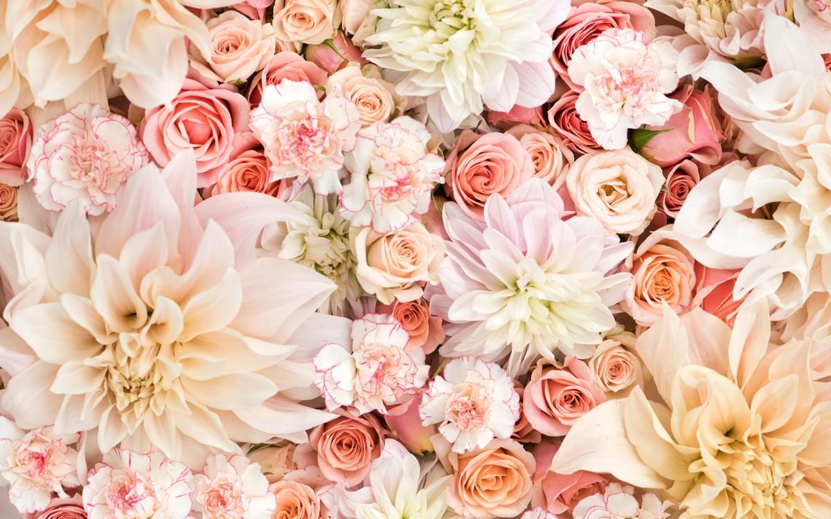 Puzzle Zbierać puzzle online - Flowers