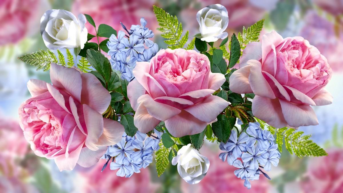 Puzzle Zbierać puzzle online - Floral collage