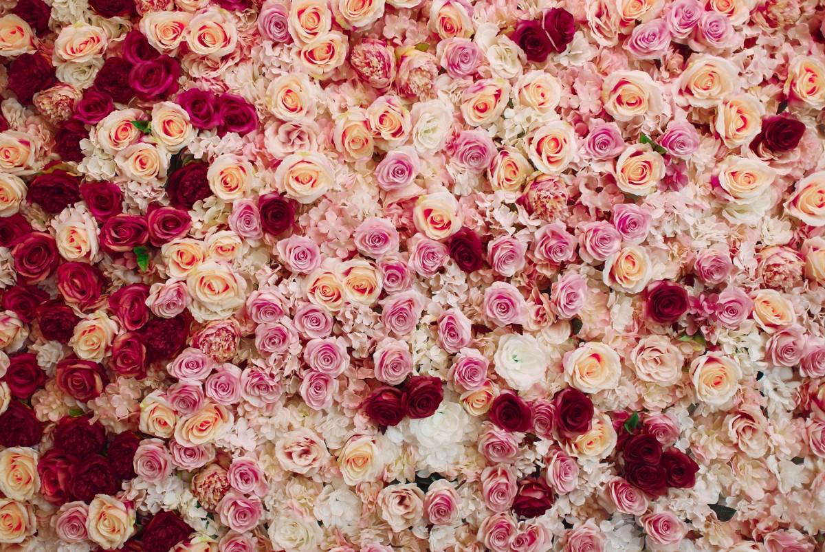 Puzzle Zbierać puzzle online - Flower carpet