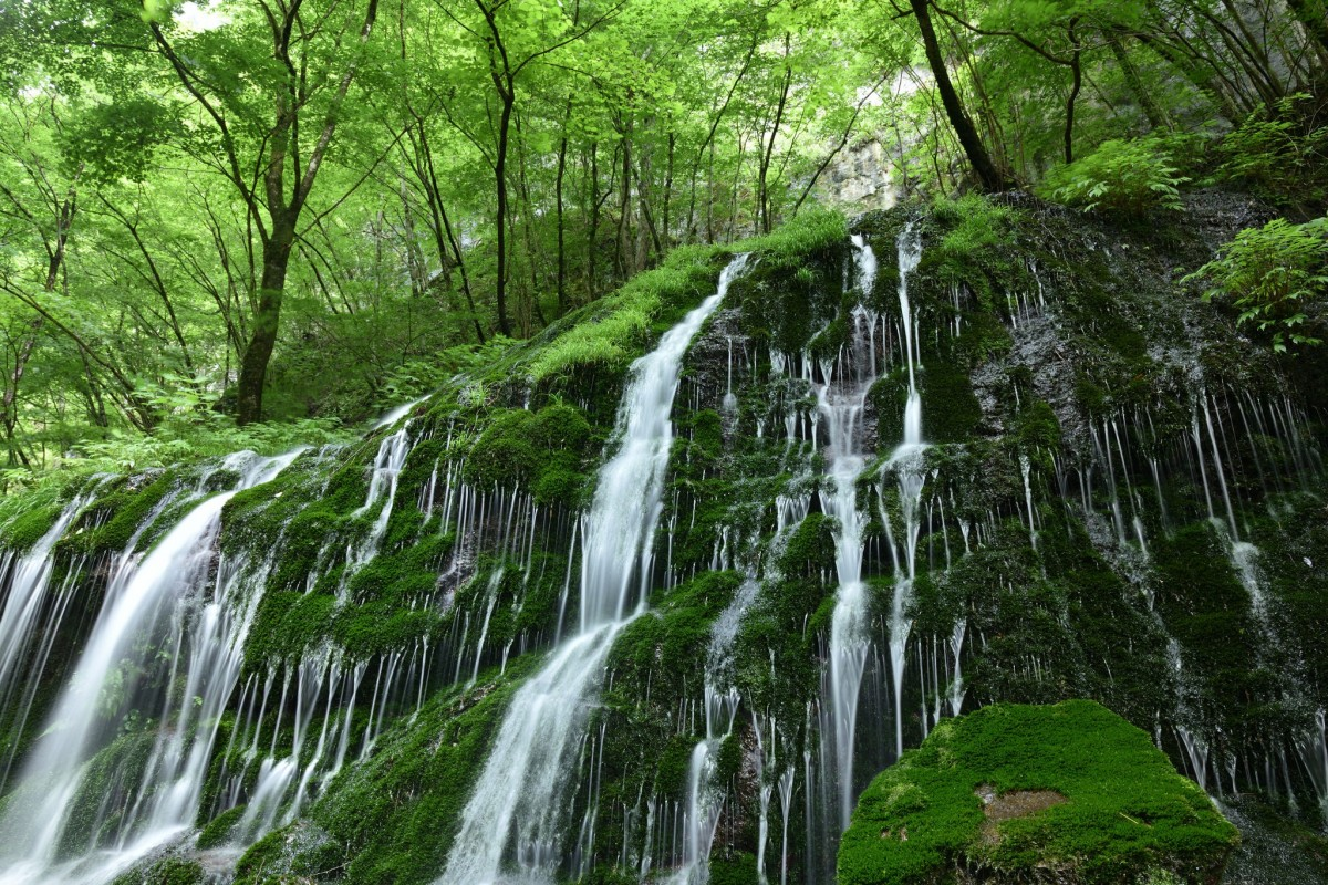 Puzzle Zbierać puzzle online - Waterfall