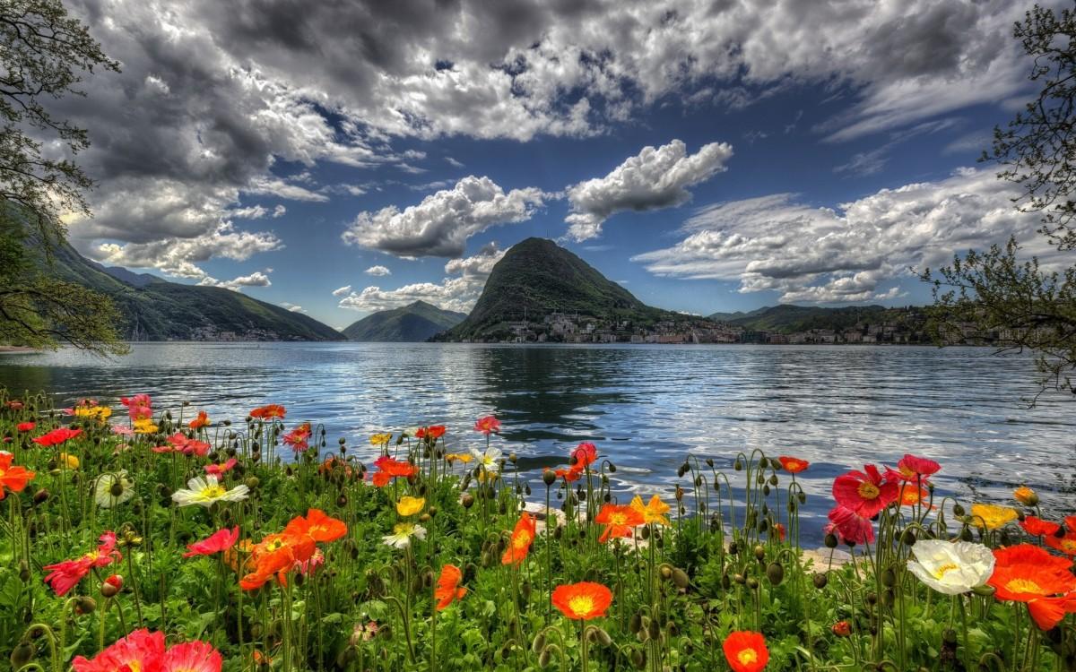 Puzzle Zbierać puzzle online - Switzerland