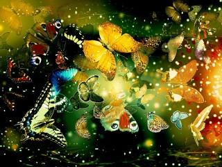 Собирать пазл Butterfly онлайн