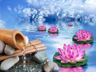 Собирать пазл Bambuk i lotos онлайн