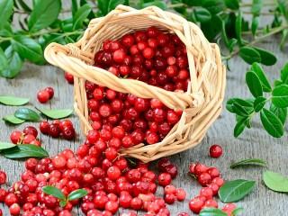 Собирать пазл Cranberries онлайн