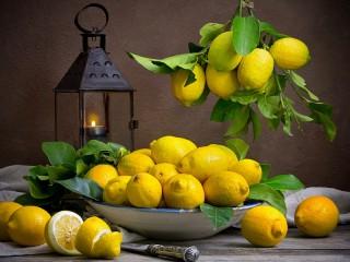Собирать пазл Lantern and lemons онлайн