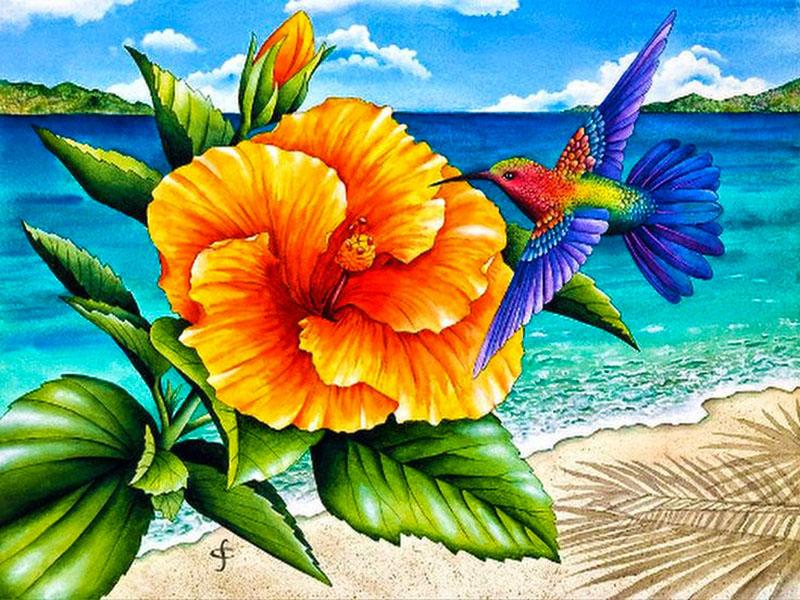 Puzzle Zbierać puzzle online - Kolibri i tsvetok