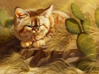 Собирать пазл The cat and the cactus онлайн