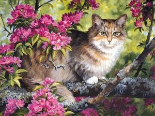 Собирать пазл Cat on a tree онлайн