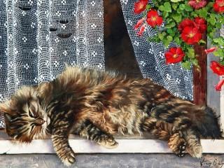 Собирать пазл Cat on window онлайн