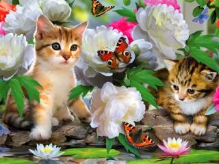 Собирать пазл Kittens and butterflies онлайн
