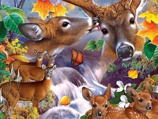 Собирать пазл Forest collage онлайн