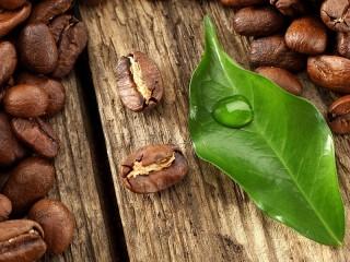Собирать пазл Leaf and grain онлайн