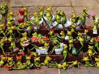 Собирать пазл Frogs онлайн
